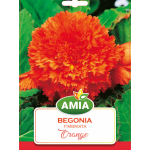Bulbi Begonia Fimbriata Orange calibru 5/6 2 bucati AMIA