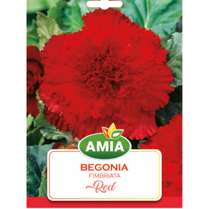 Bulbi Begonia Fimbriata Red calibru 5/6 2 bucati AMIA