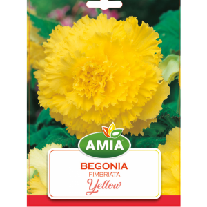 Bulbi Begonia Fimbriata Yellow calibru 5/6 2 bucati AMIA