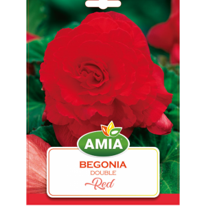 Bulbi Begonia Double Red calibru 5/6 2 bucati AMIA
