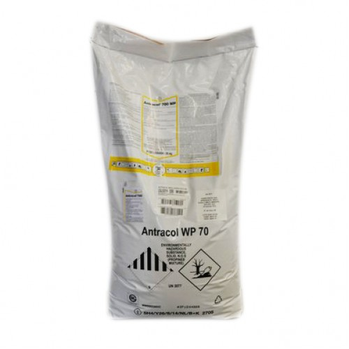 Fungicid ANTRACOL 70 WP 25 Kg Fungicide